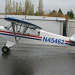Piper PA18-150 Super Cub N45462